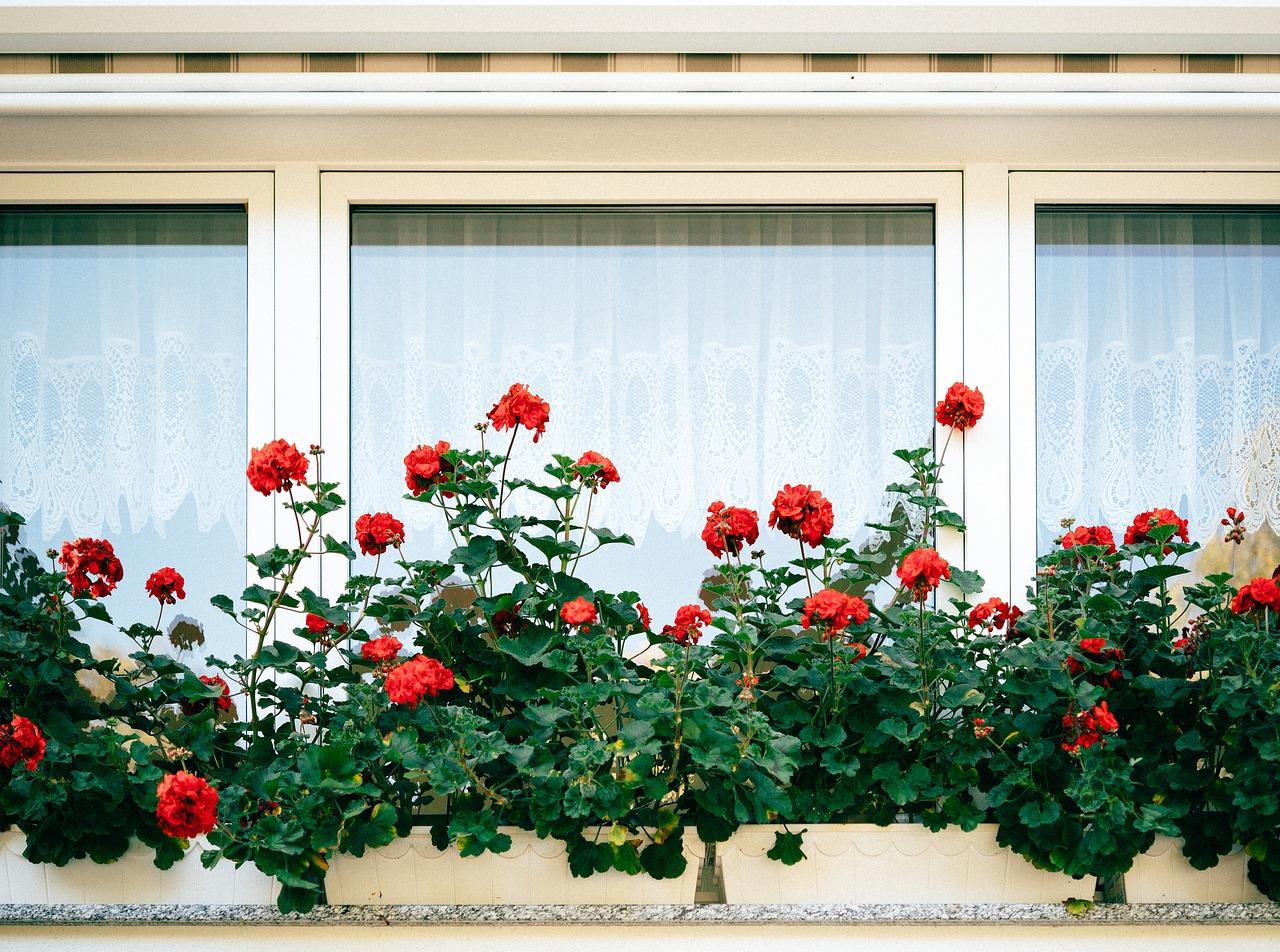 Comment choisir son poseur de fenêtres ?