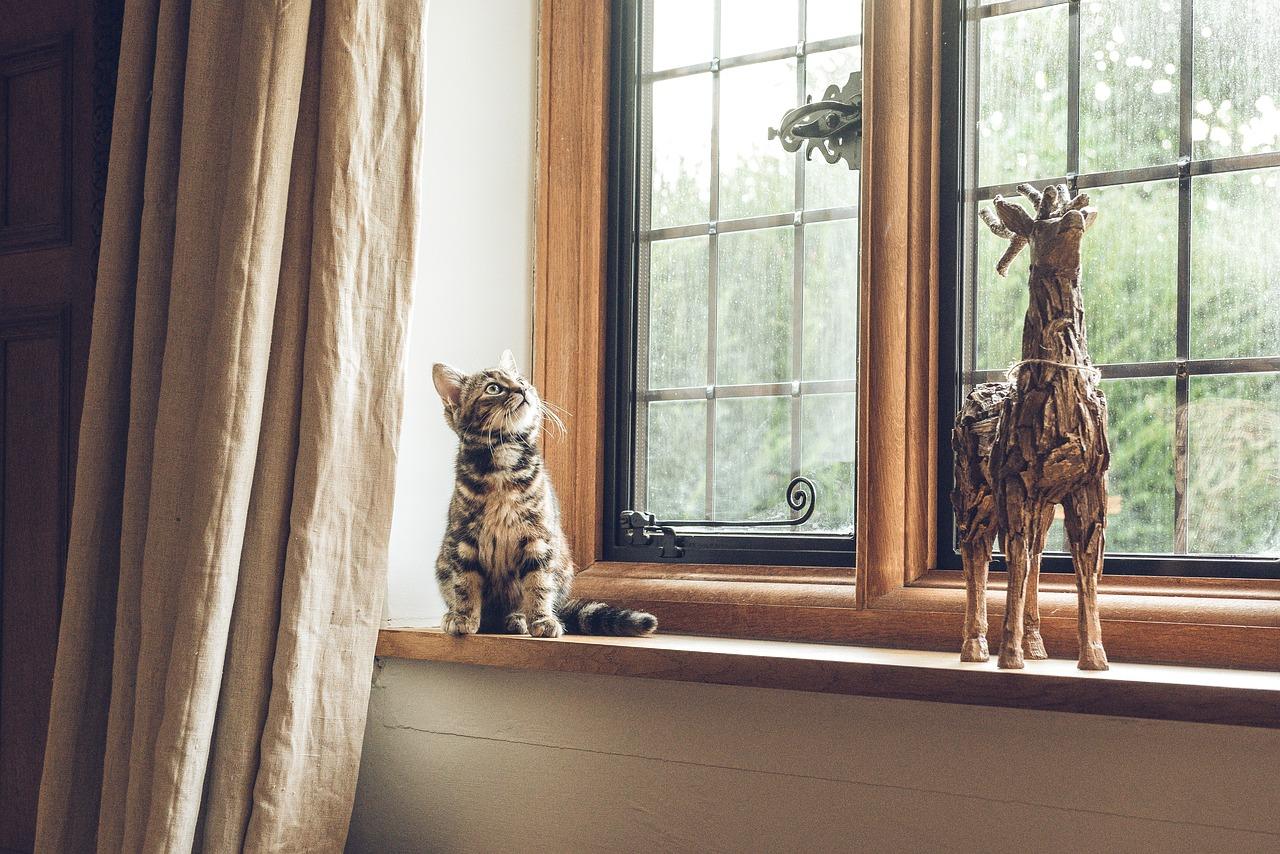 Comment isoler ses fenêtres du froid ?